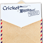 cricketwonderco150
