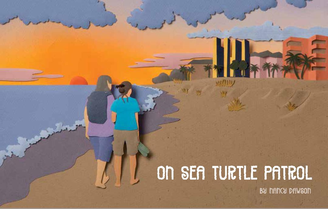 On Sea Turtle Patrol