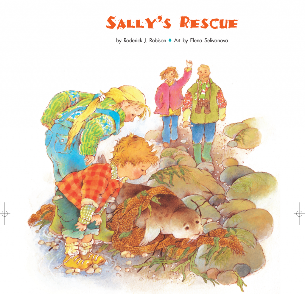 Sally's Rescue by Roderick Robison