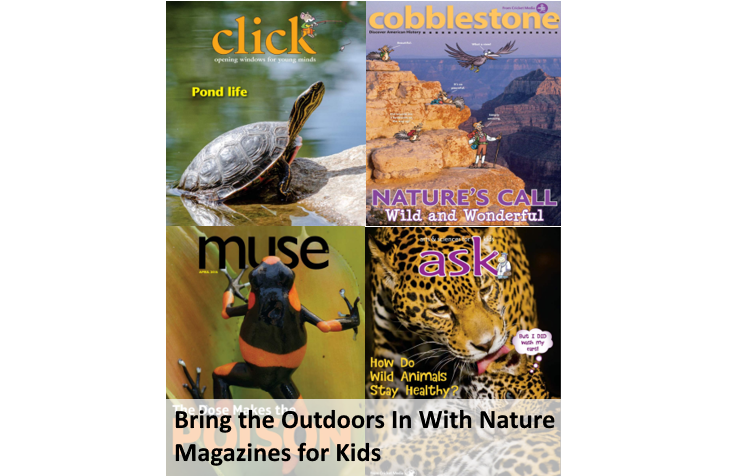 Nature Magazines for Kids Bring the Outdoors In