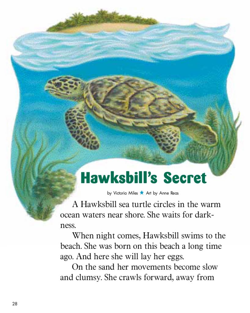 Hawksbill's Secret - Cricket Media
