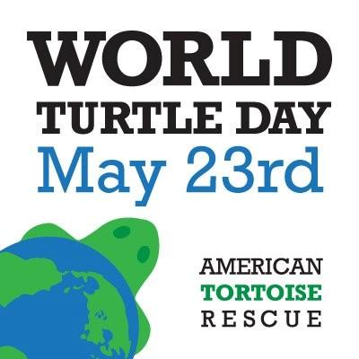 World Turtle Day 2016