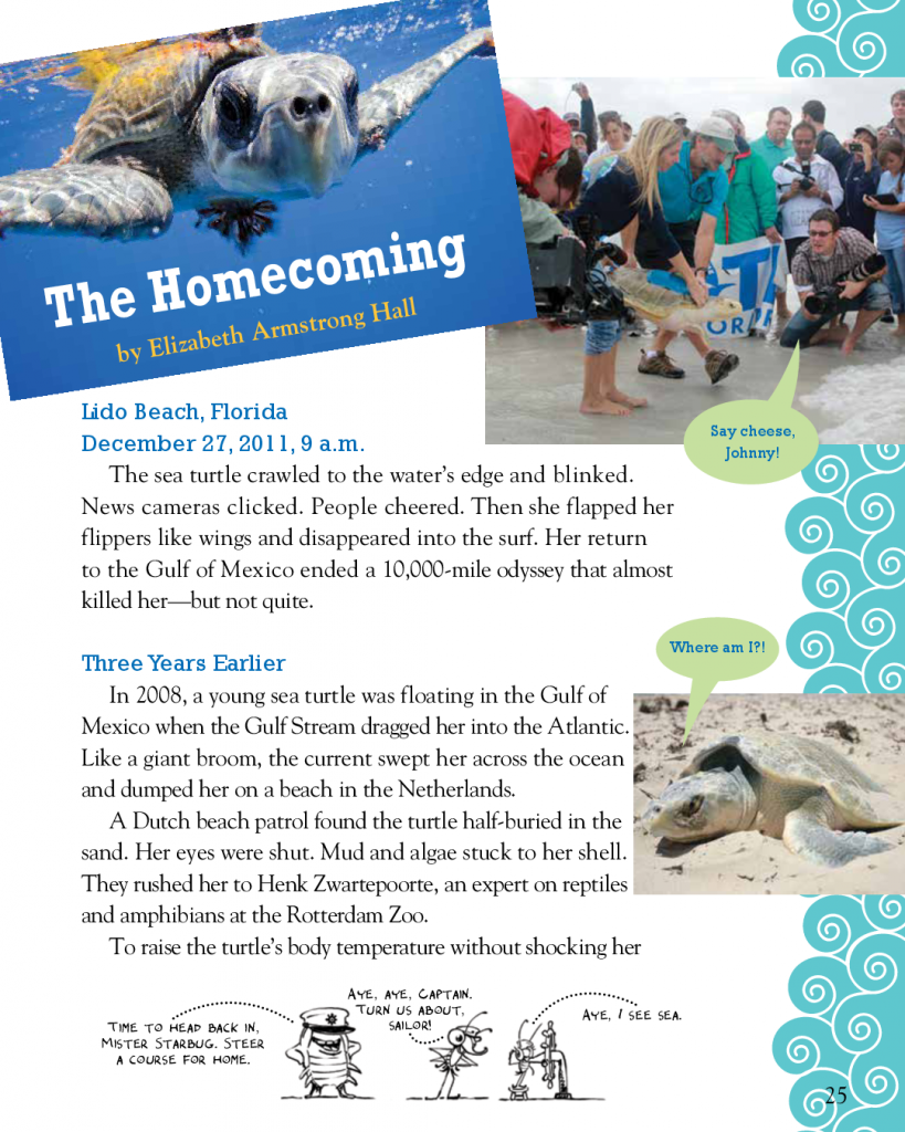 """Elizabeth Armstrong Hall Spider Magazine """"Homecoming""""  July/August 2015"""